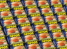 eliminate spam comments
