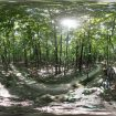 360° Photo-sphere Images of Addison Oaks [Part 1]